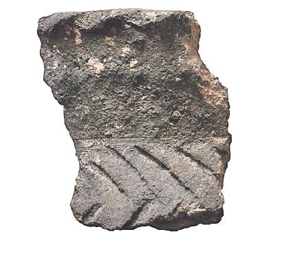 Fragment de ceràmica de Merlès (entre els segles VII i IX aC). Peces molt freqüentes durant el preibèric, descobertes al jaciment de Camprodon, a Merlès // Foto: Àngels Pujols