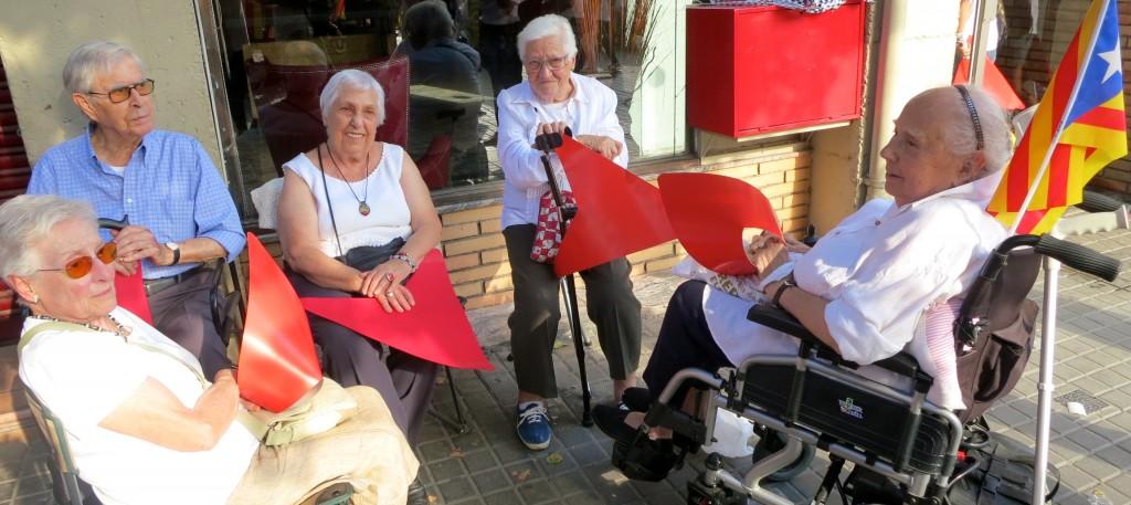 Grup d'àvies a la manifestació de la Via Lliure 2015