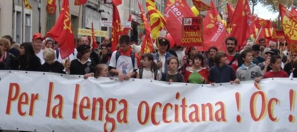 Marxa per l'occità a Tolosa el 2012 (Fotografia: Calandreta).