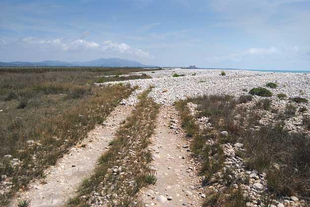E. Laguna   Retrocés natural de les dunes de cudols del Prat de Cabanes-Torreblanca.