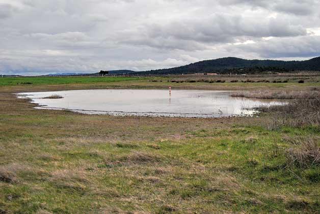 E. Laguna   Vista de la microreserva de flora Lavajo de Abajo a Sinarques.