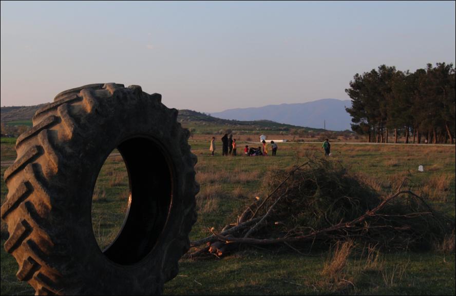 El pneumàtic i algunes branques de pins (foto: Oriol Bäbler).