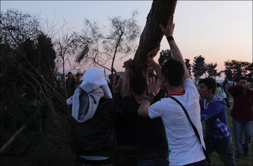 Els nois intentant col·locar el tronc (foto: Oriol Bäbler)