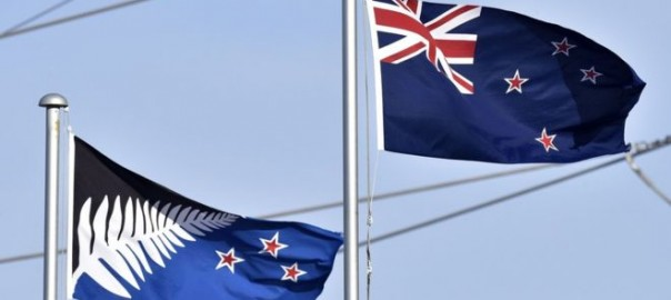 The proposed new flag, Silver Fern, was criticised as uninspiring by some