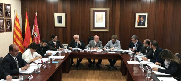 Imatge general de la sessió plenària que s'ha celebrat al Conselh Generau d'Aran 1-O