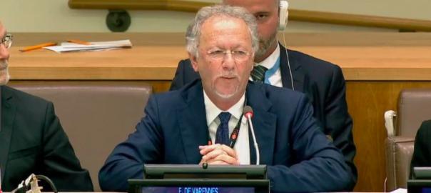 relator minories ONU