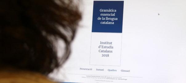 Gramàtica essencial' del IEC: anàlisi de dotze punts conflictius - VilaWeb