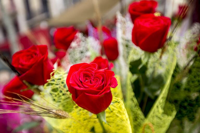 Roses a domicili