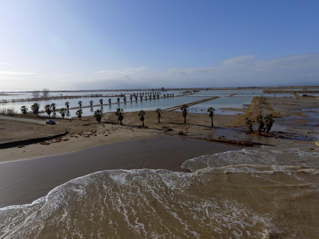 Manolo Tomás: 'La mort del delta de l'Ebre la tenen programada des de fa anys'