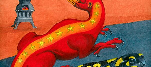 il·lustració salamandra