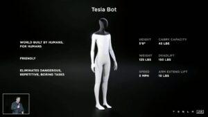 El Tesla Bot té unes mides molt similars a les d'un humà típic (Imatge: Tesla).