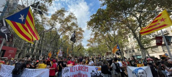 Manifestació CDR