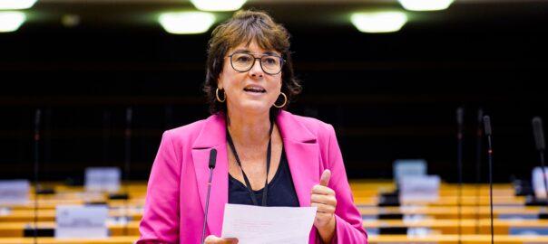Eurocambra violència gènere